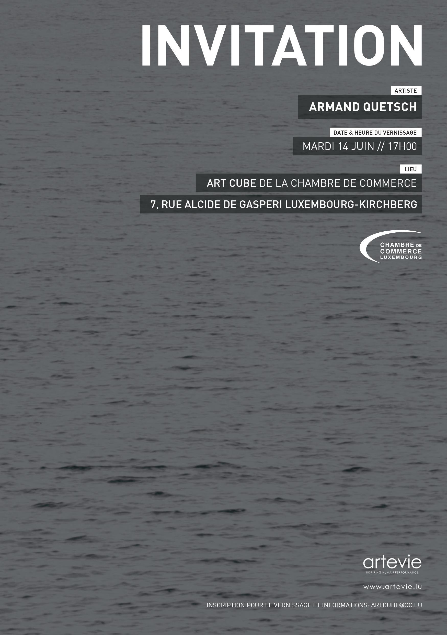 luxartcontemporary_Sans titre_Armand Quetsch_2